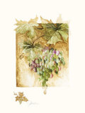 Grapes I Prints by Elizabeth Jardine