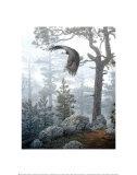 In Nebel gehüllter Wald Kunstdrucke von Daniel Smith