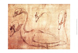 Sepia Swan Study Posters by Jean-Baptiste Oudry