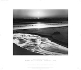 Ansel Adams - Birds on a Beach Obrazy