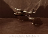 Inter-Island Airways, Sikorsky S-43, c&#244;te nord, Molokai, Hawaii, 1936 Posters