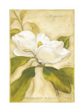 Magnolia Art by Meg Page