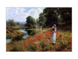 Flowers of the Field Print by Ernest Walbourn