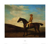 Rosaletta Art by George Stubbs