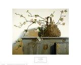Flores de manzano Láminas por Pauline Eblé Campanelli