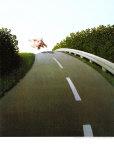 Cerdo por la autopista Láminas por Michael Sowa
