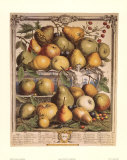 Fruits of the Season, Spring Art by Robert Furber