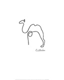 Kamel Kunstdrucke von Pablo Picasso