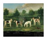 Deux couples de chiens de chasse dans un parc Affiches par Francis Sartorius