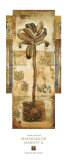 Madagascar Majesty II Posters by John Douglas