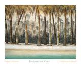 Costa turmalina Lámina por Robert Holman