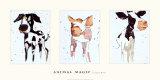 Magia di animali Poster di Kate Moore