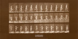 Woman Skipping Rope Print by Eadweard Muybridge