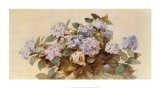 Hydrangeas Prints by Madeleine Lemaire