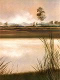 Pradera Lámina por Robert Holman