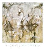 Graceful Melody Pôsters por Francois Fressinier
