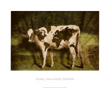 Global Cow Print by Barry Downard