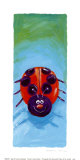 Bugs IV Prints by Kate Mawdsley