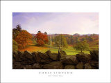 Dry Stone Wall Art by Chris Simpson