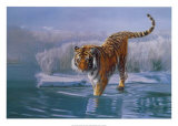 Siberian Tiger Art by Leonard Pearman