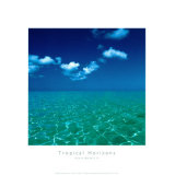 Tropical Horizons VI Posters