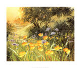 Golden Sunset Print by Mary Dipnall