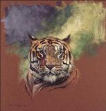 Tiger Prints by Stan Kaminski