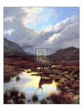 Mountain Mirror Print by Elizabeth Halstead