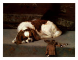 King Charles Spaniel Resting Prints by F. Hall