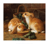 Bunnies' Meal I Prints by Alfred Barber