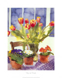 Tulips and Primulas Posters by Richard Akerman