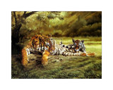 Tiger's Eye Art by Spencer Hodge