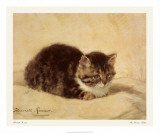 The Parson's Kitten Print by Henriette Ronner-Knip
