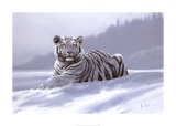 Siberian Tiger Poster autor Spencer Hodge