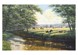 Tranquil Pasture Prints by David Morgan