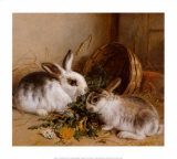Bunnies' Meal II Posters by Alfred Barber