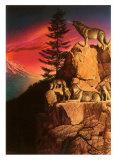 Wolf Ridge Poster by Chris Consani