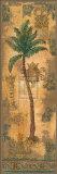 Costa de Suenos II Prints by Jill O'Flannery