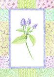 Patchwork Botanical II Prints by  Aldana