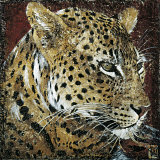 Leopard Portrait Poster by Fabienne Arietti