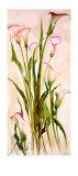 Lilies Art by Heide Konig
