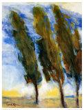 Die drei Bäume Kunstdrucke von Lucie Vezina