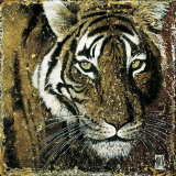 Tiger Portrait Posters by Fabienne Arietti
