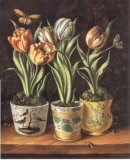 Pots with Tulips Art by Milieu Du Ciel