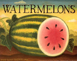 Watermelons Prints by Diane Pedersen