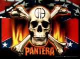 Pantera Photo