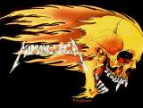 Metallica- Crâne enflammé Posters