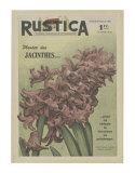 Plantez des Jacinthes Posters