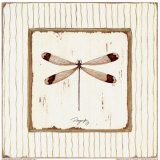 Garden Dragonfly Posters by Jan Cooley