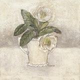 Magnolia Print by Victoria Gerken